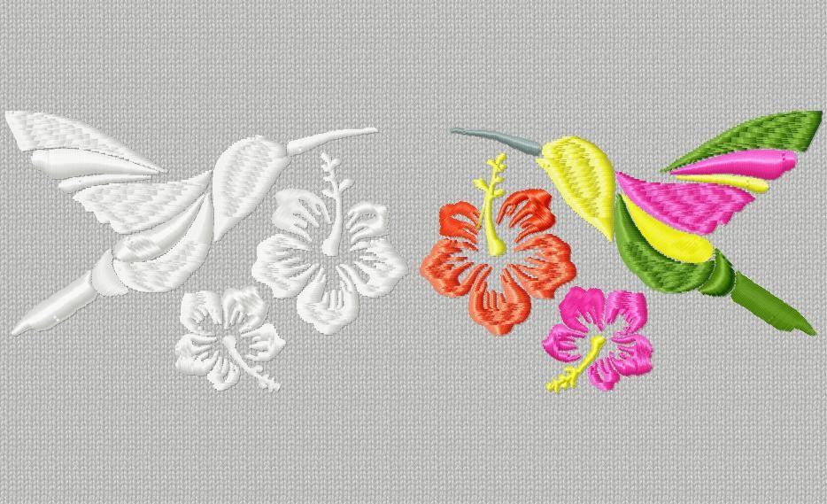 2 colibris , couleurs et blanc