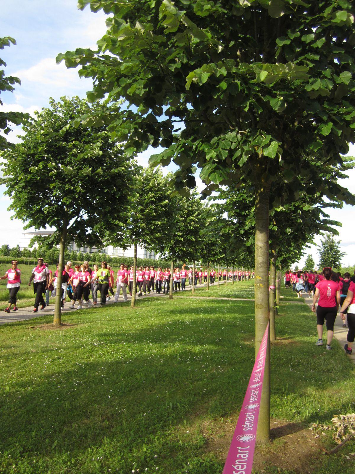 Rose, je n'ose ? Si , accompagnées de nos filles et petite-fille nous avons oser participer à la lutte !