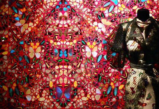 Un panneau d'ailes de papillon et une robe de Elsa Schiaparelli.