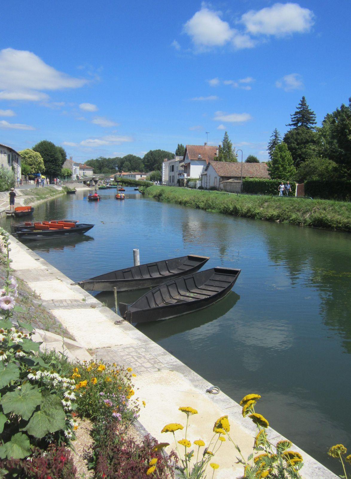 """Balade en barque....à la découverte du Marais et de ses """"belles blondes """""""