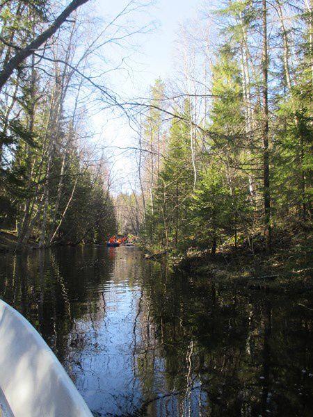 La détente ...Promenade sur les lacs...rigolade garantie !!! Au retour un élan et ses deux petits ont croisé notre chemin.