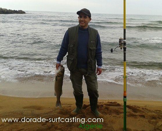 Blog de Melle x Algerie  On Atrappe Pas Un Requin Avec Une Canne A Péche (8')