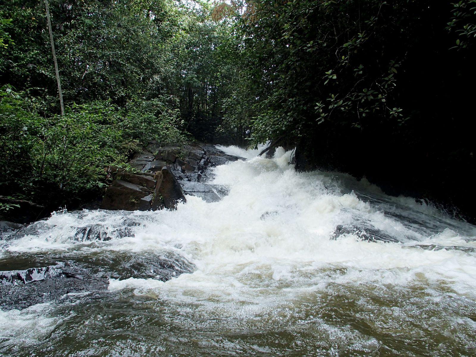 Cascade Grillon - Régina - Guyane