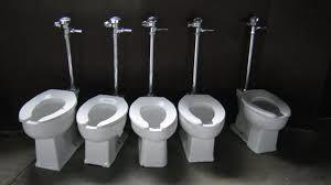 Fait Maison: Nettoyant WC Désinfectant Détartrant et  Anti-Calcaire, Gel nettoyant, blocs toilettes et Poudre détartrante Do It Yourself, économique et écologique pour une maison saine