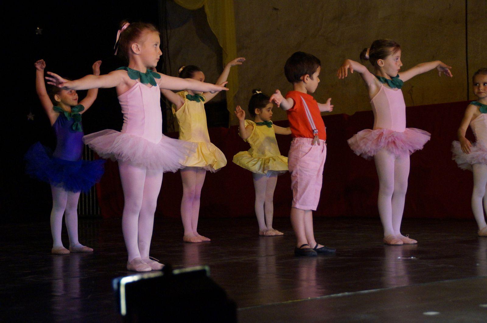 Saint sever l 39 association saint for Cours de danse classique pour adulte