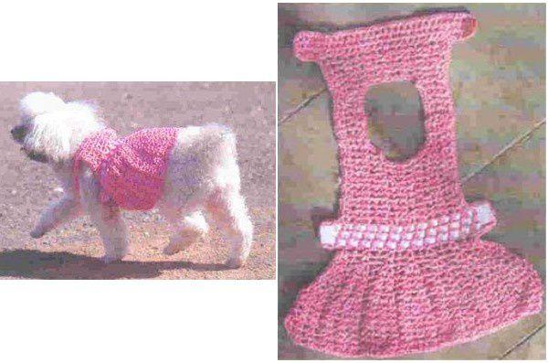 Manteaux pour chiens