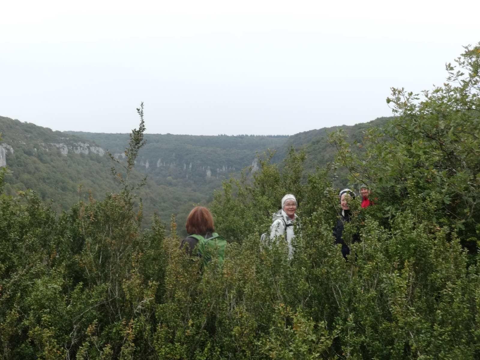 Dans les combes au-dessus de Gevrey-Chambertin (13/10/2016)