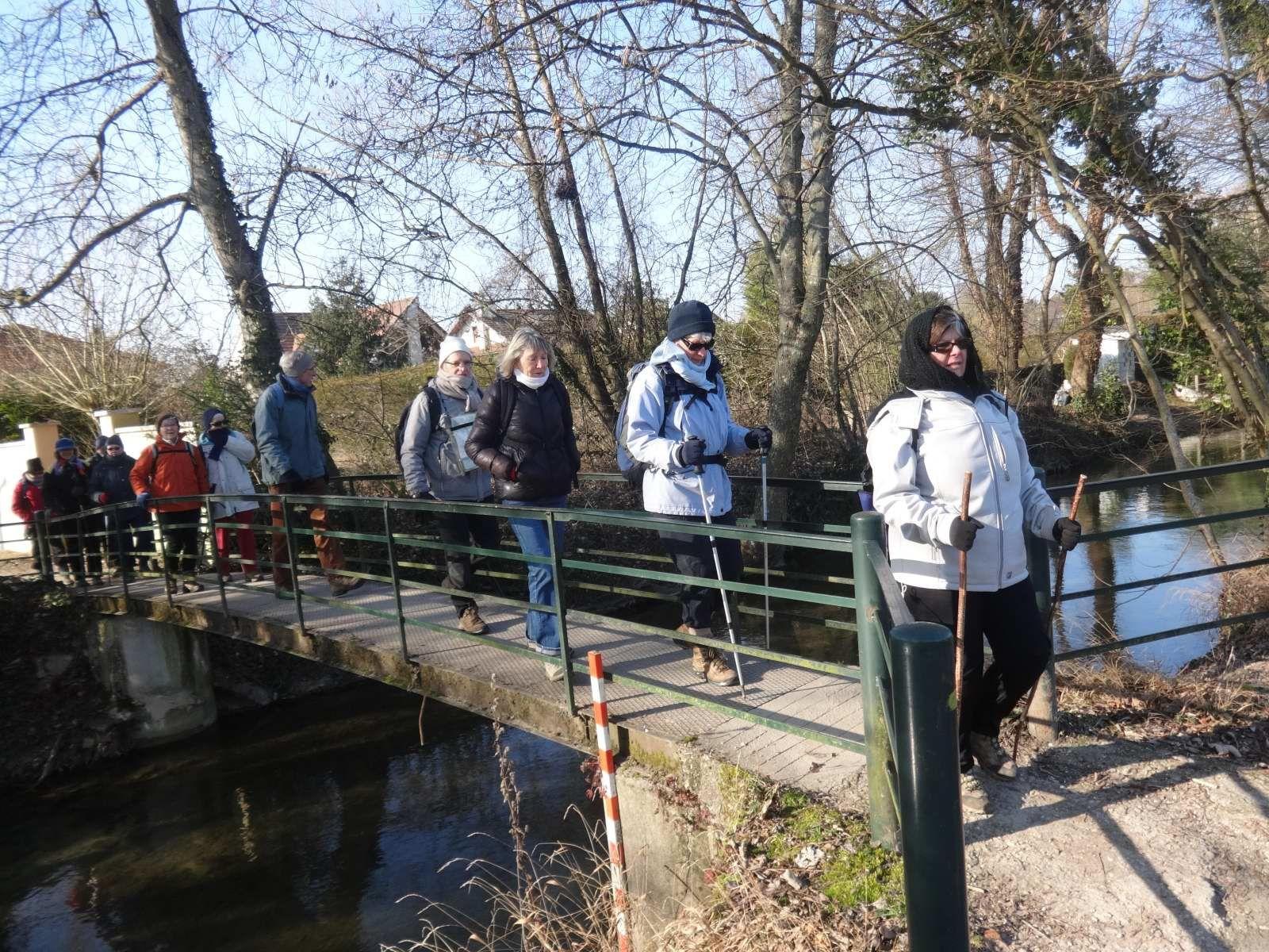 Les étangs de Couternon (19/1/2017)