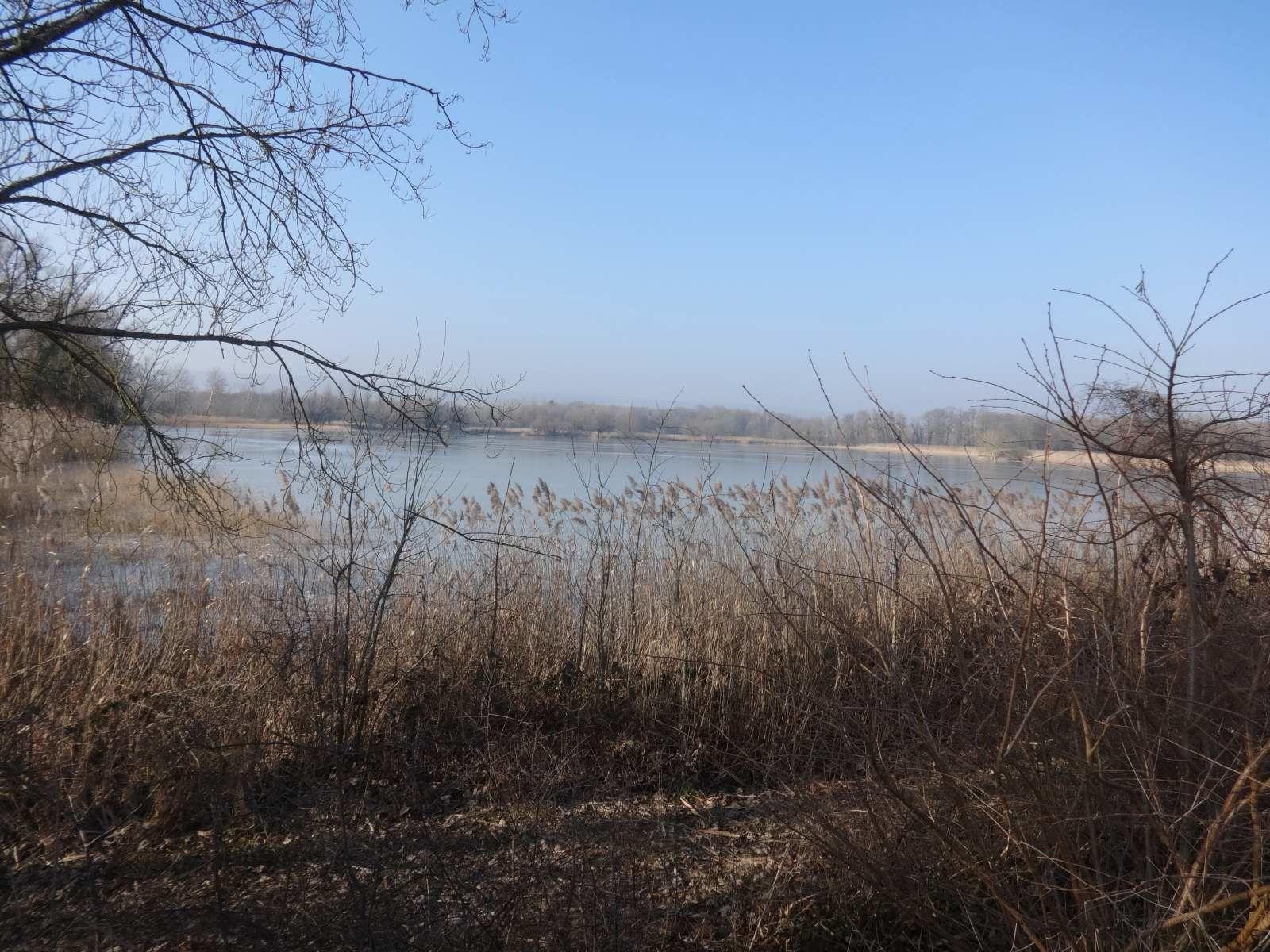 De Barges à l'étang de Satenay (26/1/2017)