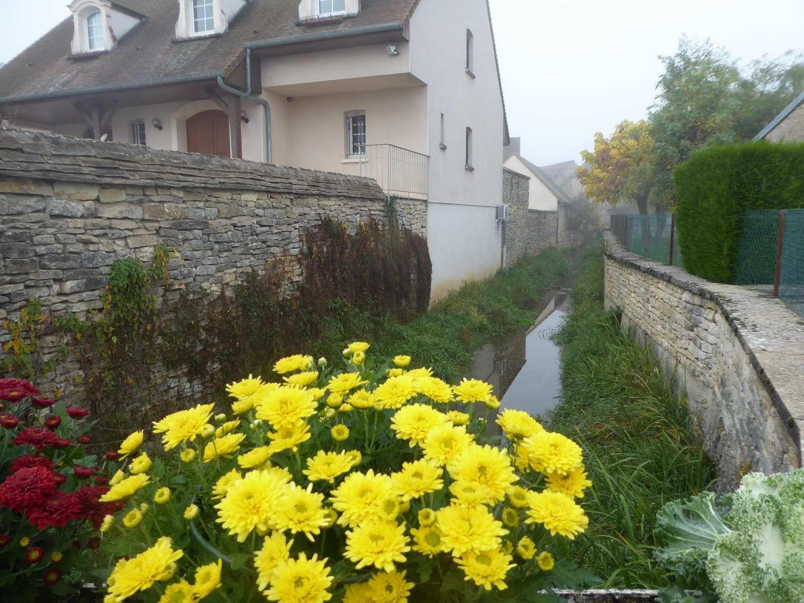 Meursault (26/10/2017)