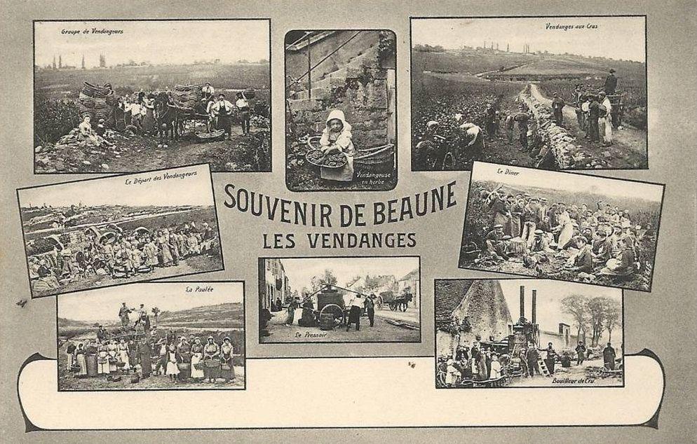 24 cartes multivues de Beaune.