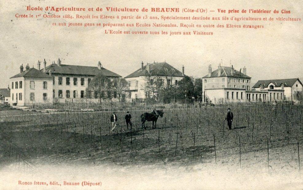 Ecole d'agriculture et viticulture, Station oénologique de bourgogne à Beaune.