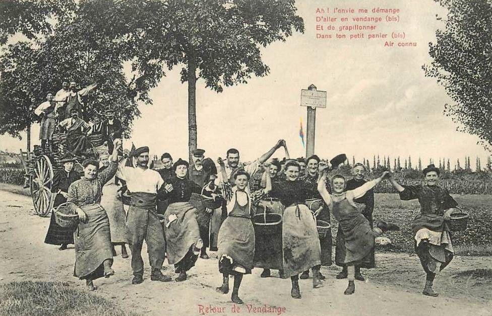 Vendanges à Beaune (21 cartes postale) - Beaune.