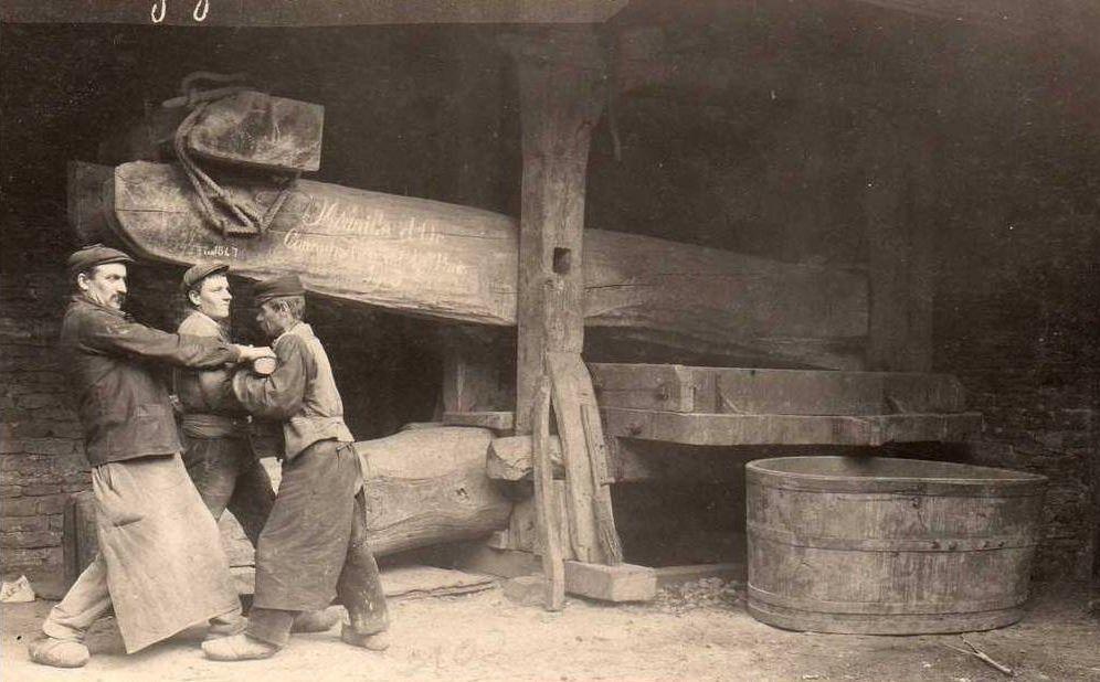 Vendanges en Bourgogne - Vieux Pressoir, scène de vies - Région de Beaune - Beaune.