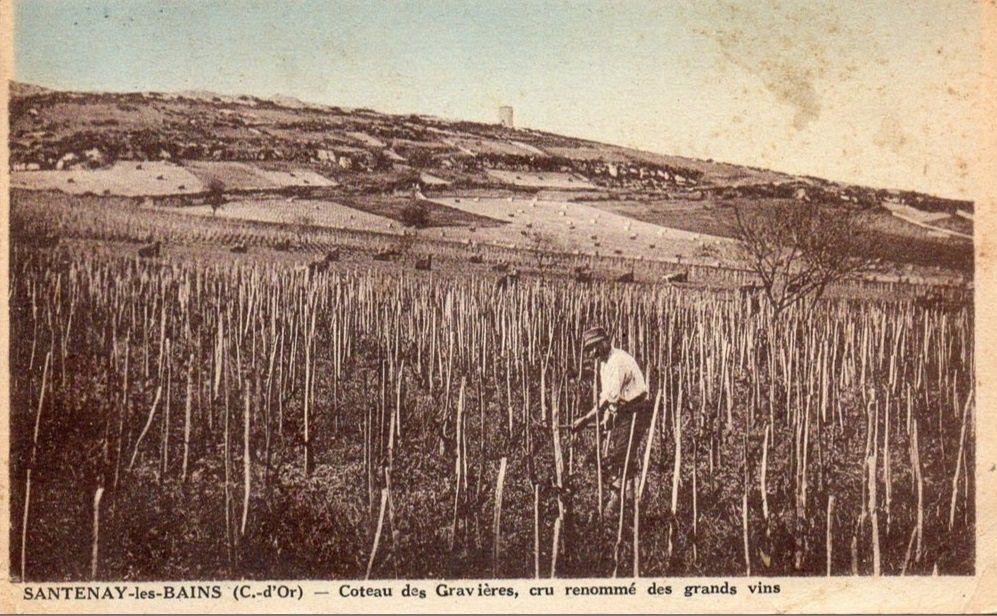 Santenay - Vignobles, Hameau des charrières, la chaume, Canal du centre, Vallée de la Cozanne et Sampigny. - Santenay.