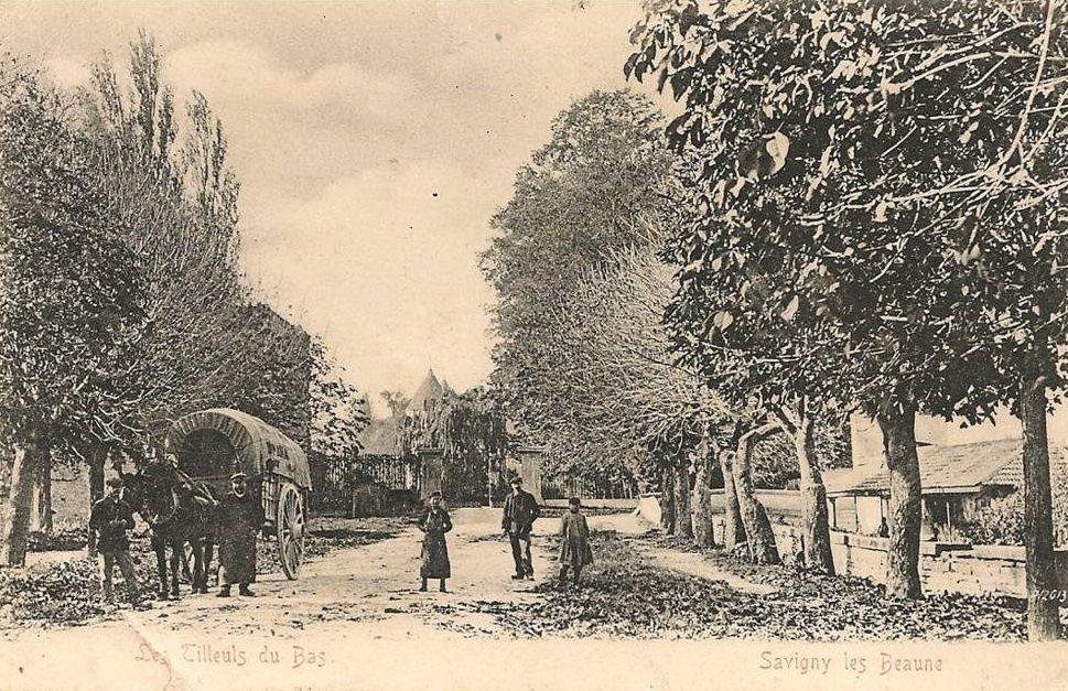 Savigny-les-Beaune - Chemin des Chenevières, Grande Rue, Route de Bouilland, Rue Basse, Rue de Chorey, Rue du Gand, Rue des Tilleuls bas, Rue du Ciel, Monument aux Morts, Station électrique et vieille demeure - Savigny-les-Beaune.