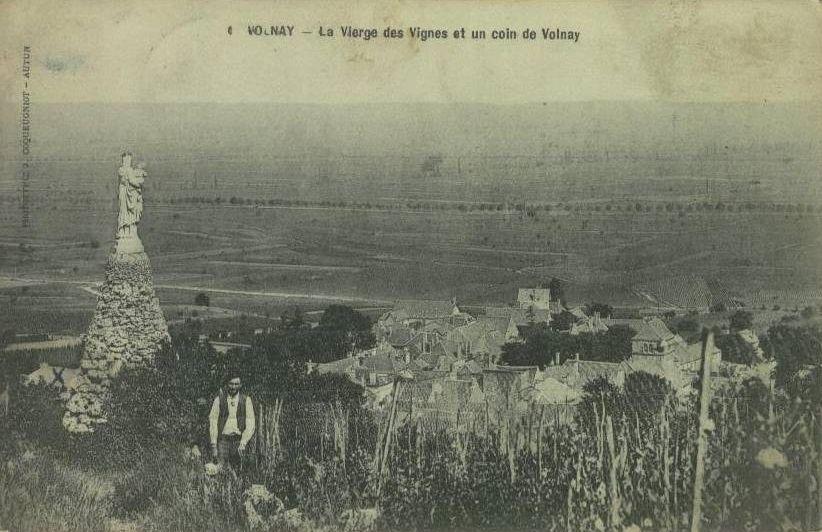 Volnay - Vue générale - Volnay.