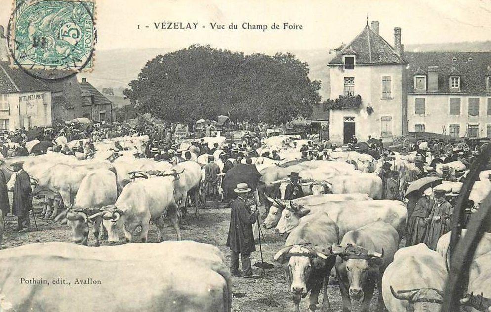 Vézelay - Un jour de Foire - Place du champ de Foire - Hôtel du cheval Blanc - Vézelay.