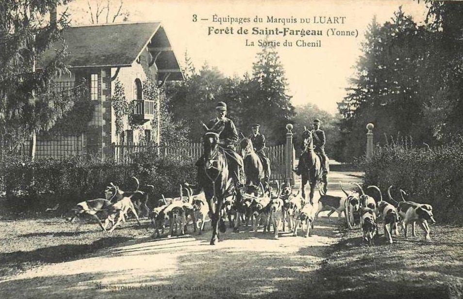Saint-Fargeau - Chasses à courre, équipages du Marquis de Luart, chenil, bénédiction des chiens, le départ, rendez-vous - Saint-Fargeau.