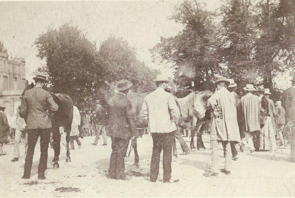 La foire aux chevaux - Promenade des Marbres - 71400 Autun.