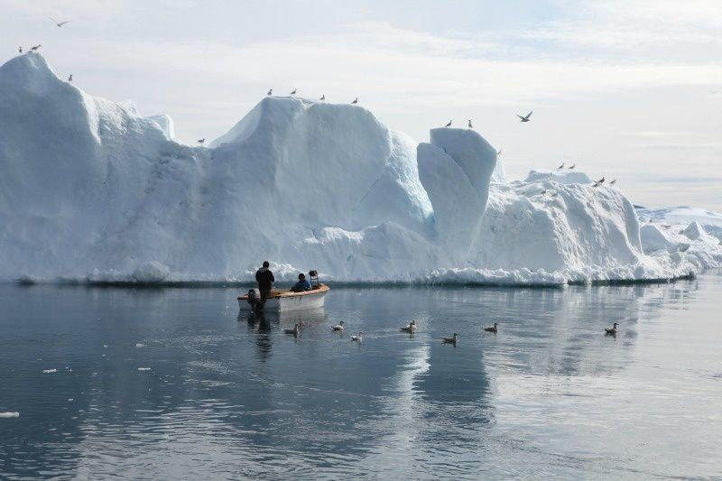 les iceberg d'ilulissat