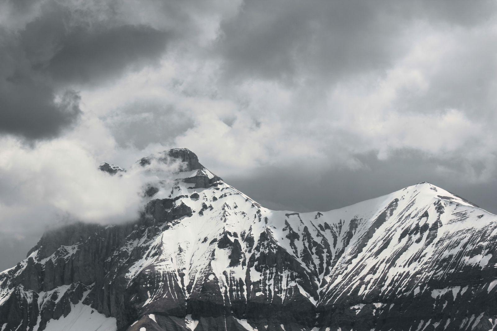 En transit, avant la montée dans les alpages de LUS !