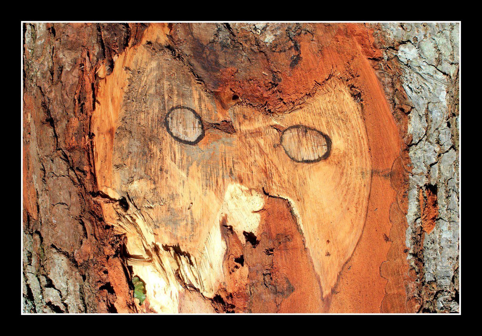 Forestiers et artistes à la fois...