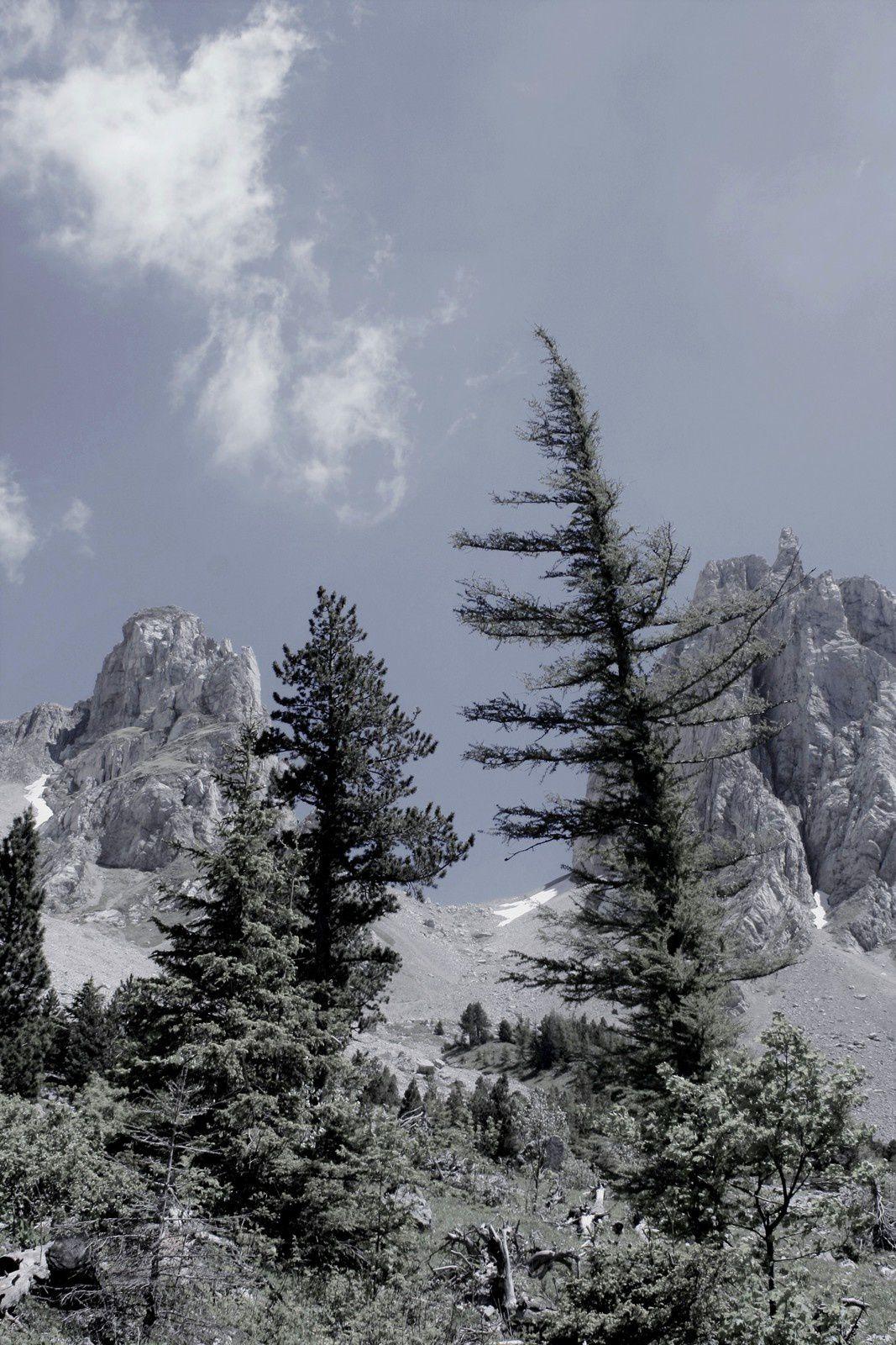 &quot&#x3B;L'autre versant...&quot&#x3B; celui qui est dans la Drôme