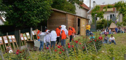 La conférence sur les abeilles solitaires traduite en allemand par une assistante de charme.