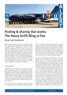 Pooling and sharing that works: the Heavy Airlift Wing at five