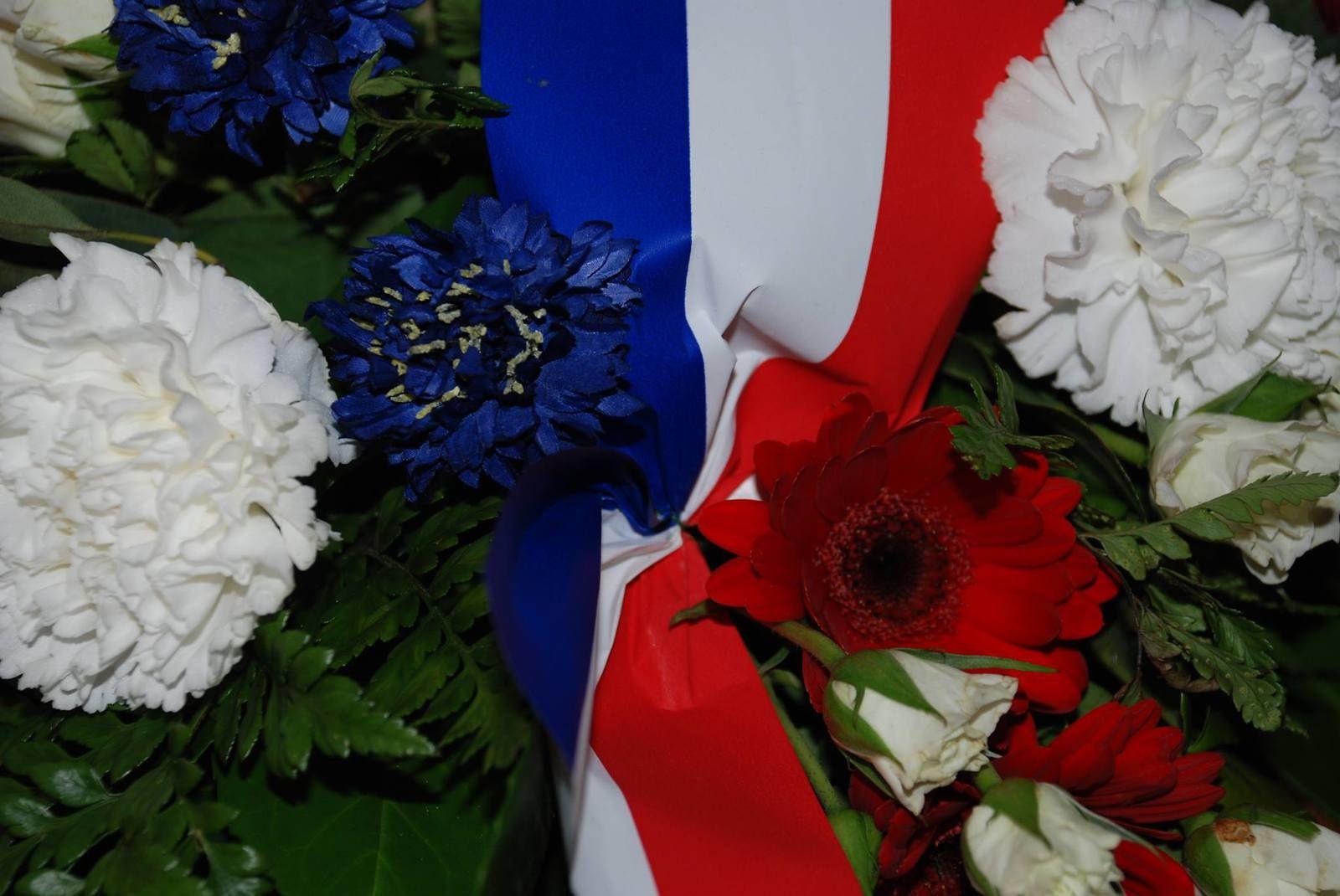photo Bleuet de France