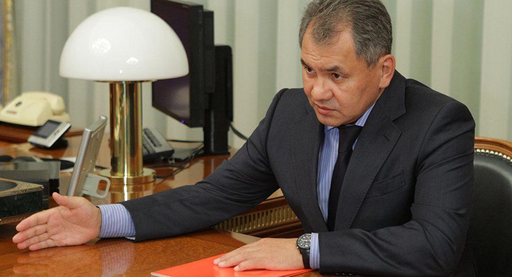 Le ministre russe de la Défense Sergueï Choïgou - photo Sputnik