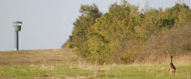 Le CTM Rosnay au cœur de la nature.