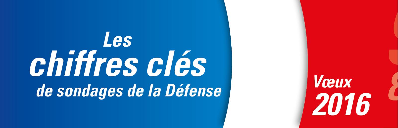 Les chiffres clés des sondages de la Défense 2015