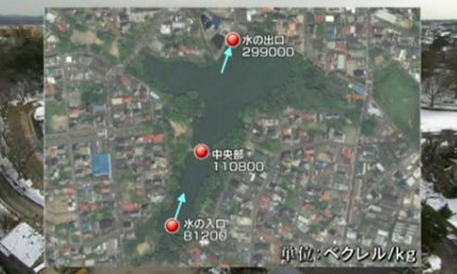 Lorsque l'eau d'un étang rejoint une rivière, souvent en passant par un canal, nous avons constaté que des taux de radioactivités sont très élevés. Puisque l'eau de l'étang est stagnante.