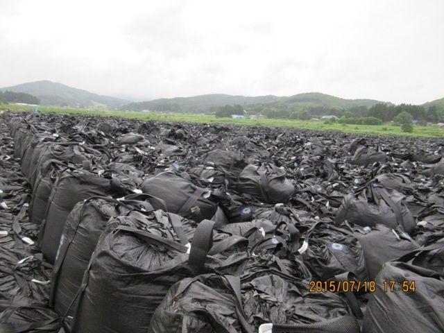 Champ de sacs de déchets radioactifs à Iitate