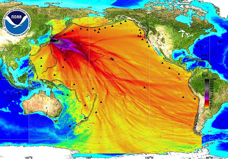 Carte de l'amplitude des vagues du tsunami (Source : National Oceanic and Atmospheric Administration (NOAA))