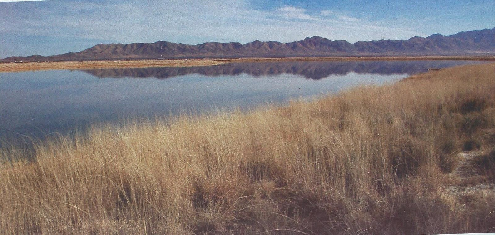 Arizona le lac Cochise