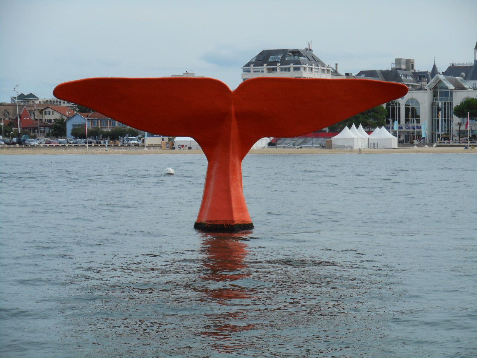 Arcachon : la queue de la baleine