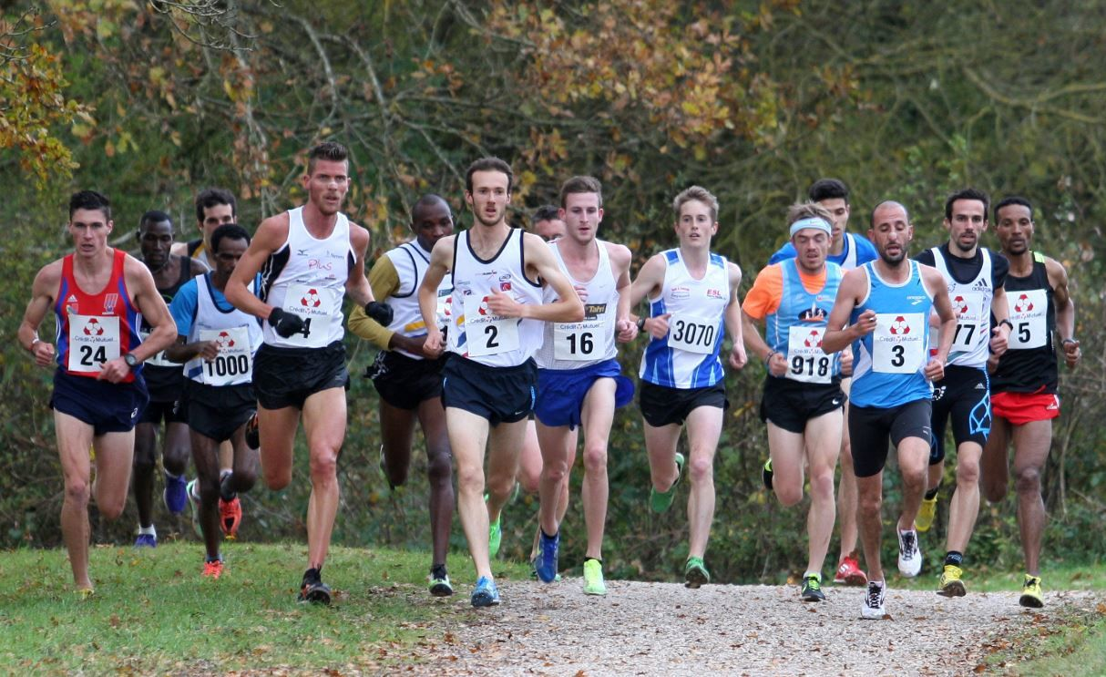 Mercredi 11 novembre 2015 - Cross national d'Arnay-le-Duc