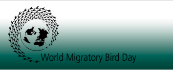 Les migrations animales