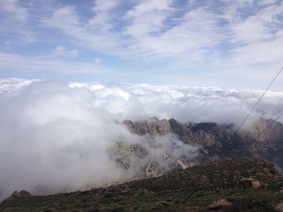 Ascension du Pic Sidi Amar ( Ouarsenis)
