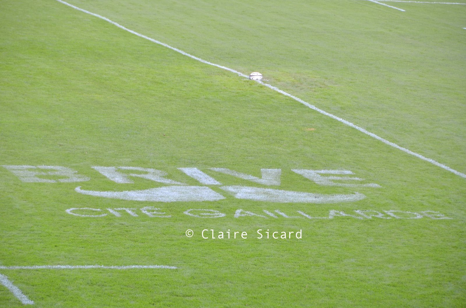 Nouveau sur la pelouse du Stadium : la moustache fait sa rentrée elle aussi!