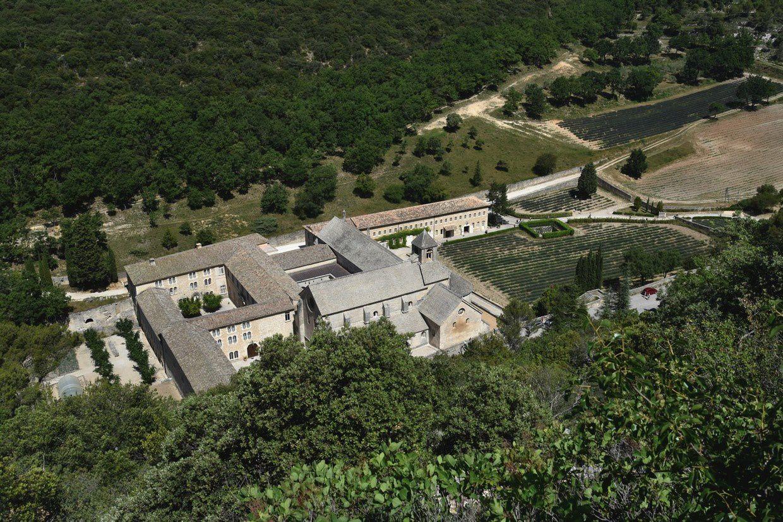 Abbaye de Senanque, un peu tôt pour la lavande !