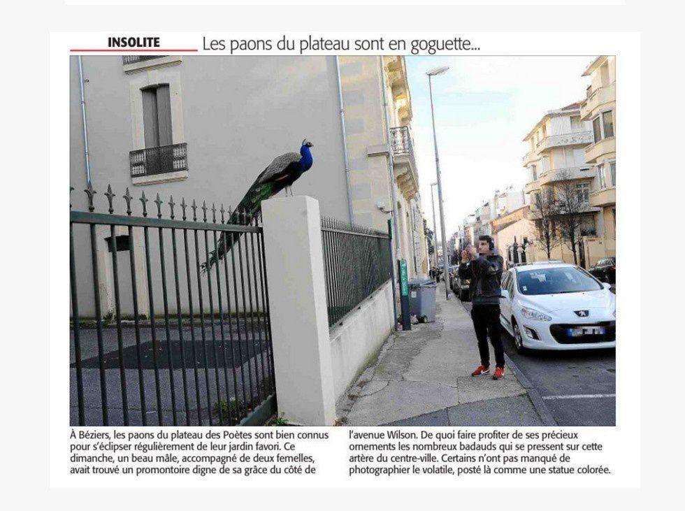 (Midi Libre)