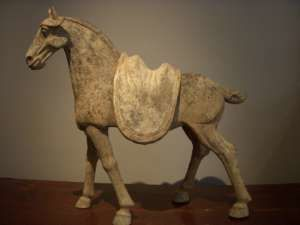 ANANAS NOUS A QUITTÉS et je pense à la douleur de ma grande. Ananas fut son premier cheval. Il avait 26 ans &#x3B; il a été choyé jusqu'à sa fin et elle a pu l'apaiser à ses derniers soubresauts, La douleur va être grande et les épreuves continuent. CES CHEVAUX POUR TOI ANNE