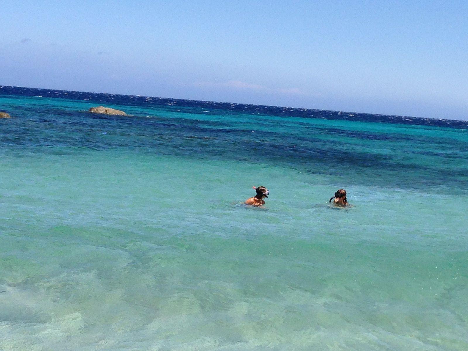 A me Corsica