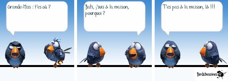 Source image : http://www.birdsdessines.fr/bd/temp/1377849011.png