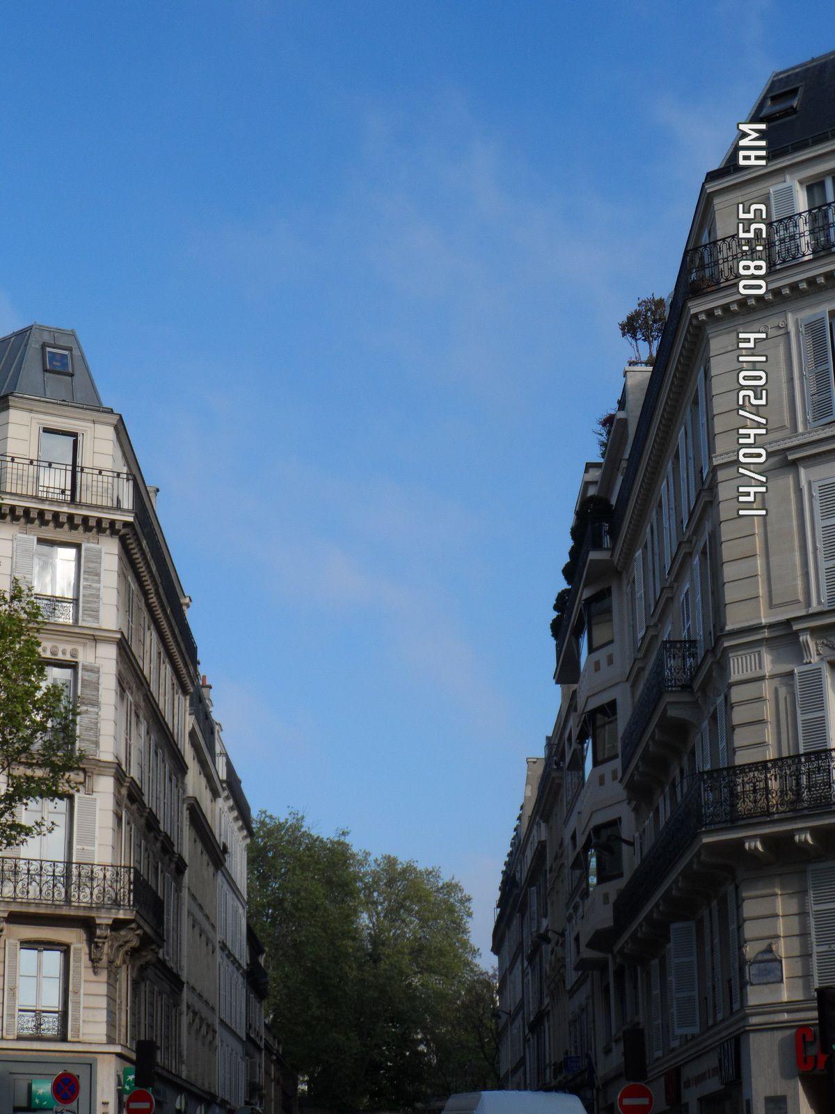 Ce matin, en allant travailler, dans les rues de Paris 8ème !