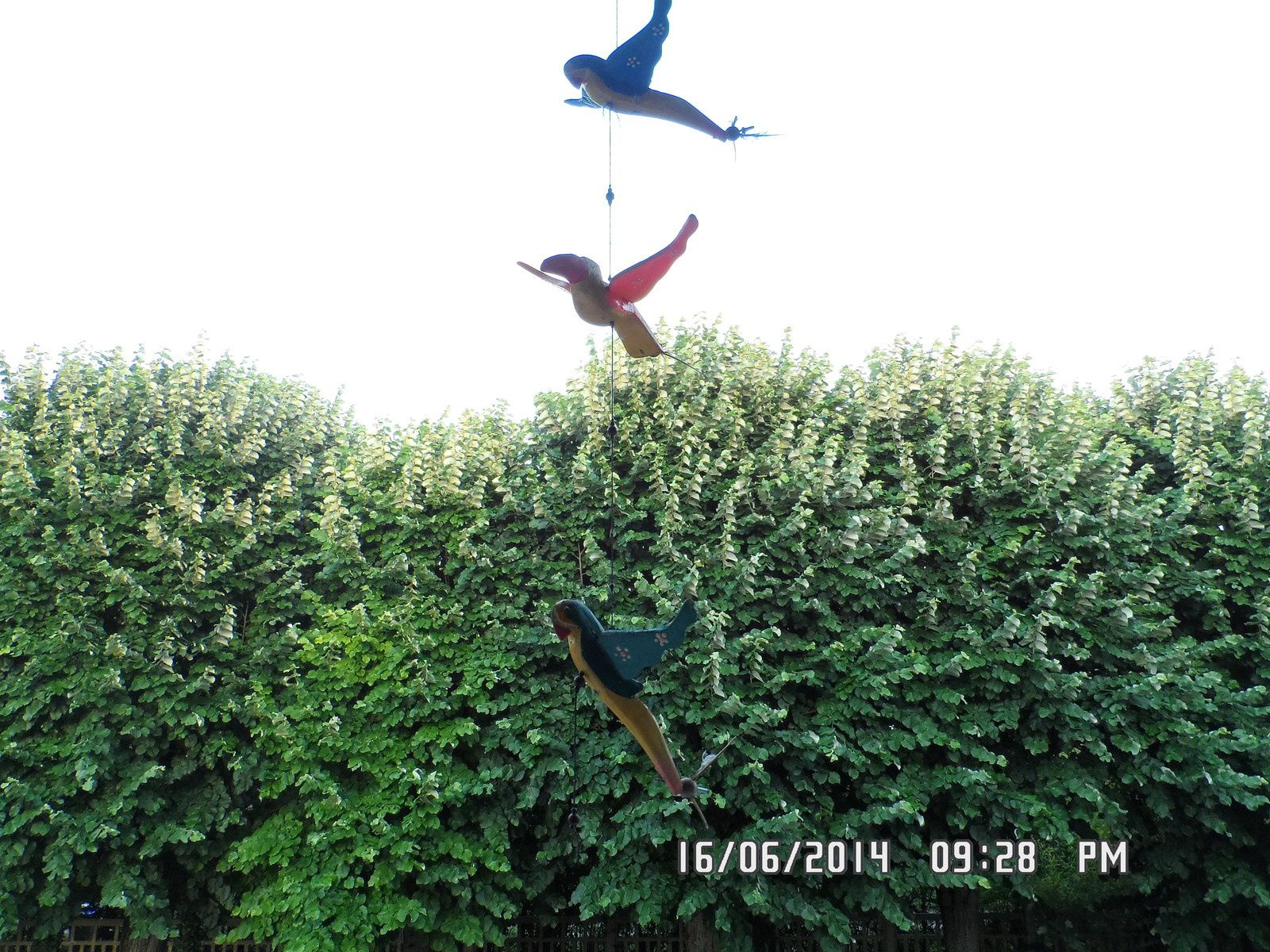 De ma fenêtre de salon, en soirée... Il y avait même un coin de ciel bleu !